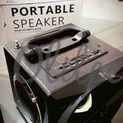 Speaker Wood BT DYT-330