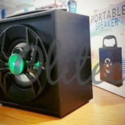 Speaker Wood BT DYT-53D Spider